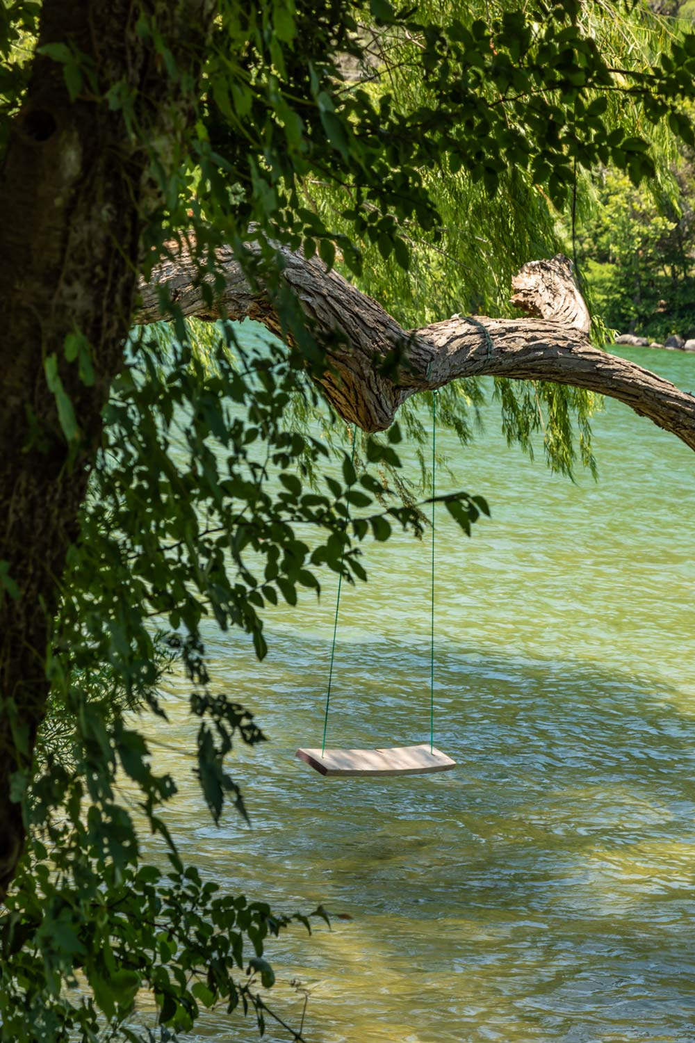 swing over water by tom hausler