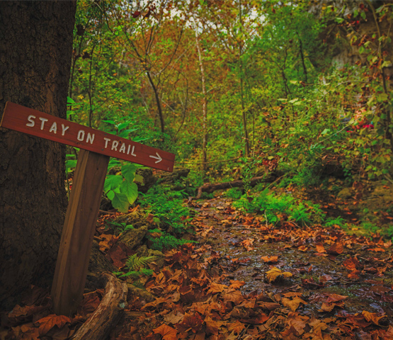sign that reads stay on trail near trail by brian deitch